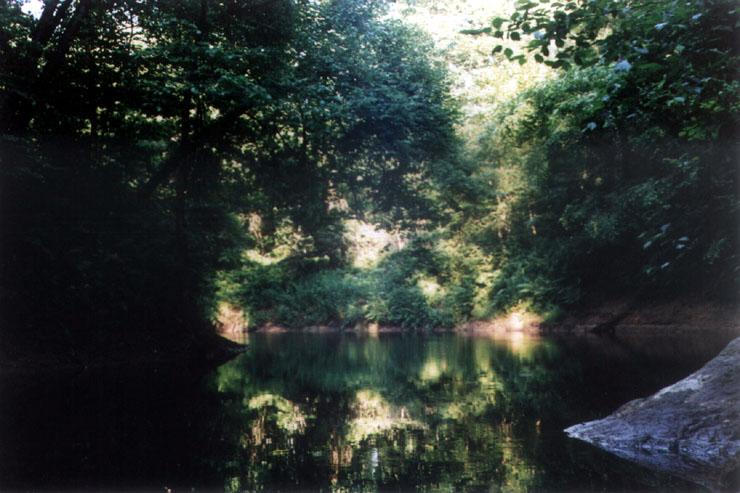 Каньон реки ящера вид на реку в районе